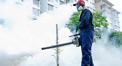 Fumigación - servicios de control de plagas