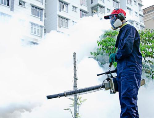 Erradicar las plagas mediante la fumigación