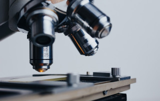 Microscopio - tecnología para acabar con termitas y carcoma