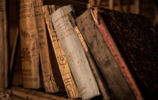 Termitas y carcoma, peligrosas devoradoras de libros